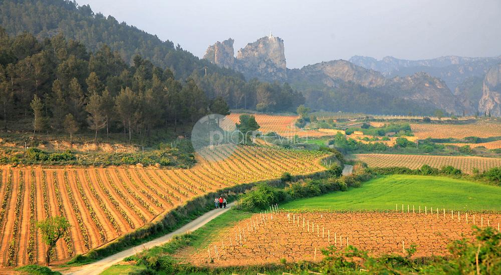 San Felices. Haro. La Rioja ©Daniel Acevedo / PILAR REVILLA