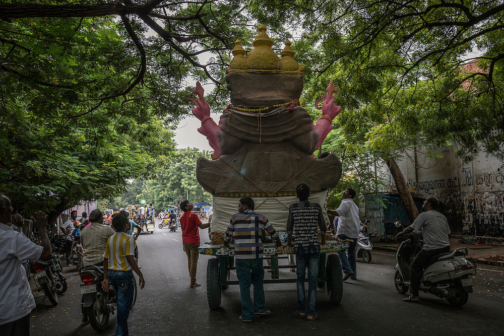 A Lord Ganesha statue gets hung up in the branches of a tree on its way to the port area of Pondicherry, where it will be loaded onto a boat and dumped in the sea, symbolically returning it to nature.  Pondicherry, India