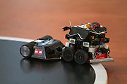 Mini Sumo. RobotChallenge 2010. First European Robot Sumo Championship..Two robots compete and try to push the competitor off the ring. There are different classes: Standard (3kg), Mini (500g), Micro (100g), Nano (25g) and Humanoid Sumo.