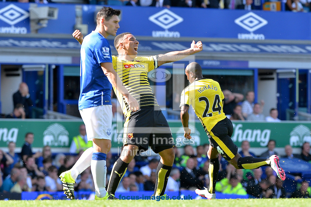 Troy Deeney of Watford (centre) celebrates as Odion Ighalo of Watford celebrates scoring their second goal to make it Everton 1 Watford 2 during the Barclays Premier League match at Goodison Park, Liverpool<br /> Picture by Ian Wadkins/Focus Images Ltd +44 7877 568959<br /> 08/08/2015
