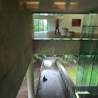 FREE IMAGE-NO REPRO FEE. Glucksman Gallery. Animal Habitats in Contemporary Art exhibition 2014. Photo by Tomas Tyner, UCC.