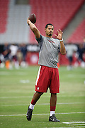 Arizona Cardinals quarterback Logan Thomas (6) throws a pre game pass before the 2014 NFL preseason football game against the Houston Texans on Saturday, Aug. 9, 2014 in Glendale, Ariz. The Cardinals won the game in a 32-0 shutout. ©Paul Anthony Spinelli