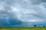 Clouds build over Weld County north of Longmont.<br /> Matthew Jonas/Staff Photographer May 15, 2015