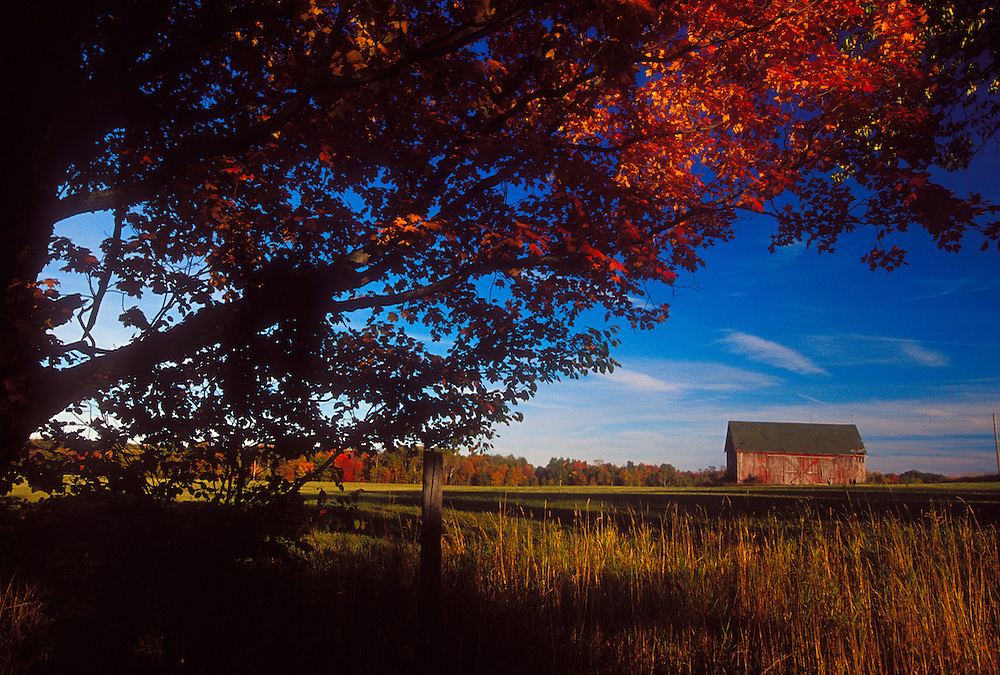 A barn and field are framed by trees with fall foliage near Marquette, Michigan in autumn.