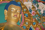 New Friends;  Dehra Dun and teachings of Chanting the Names of Manjushri with HH Chetsang Rinpoche.New Friends;  Dehra Dun and teachings of Chanting the Names of Manjushri with HH Chetsang Rinpoche.Buddha Shrine at the Kagyu College at Jang Chub Ling.