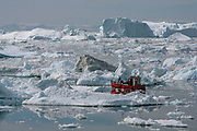 A fishing boat manouvers between icebergs at the mouth of the Ilulissat Icefjord, where the Jakobshavn Glacier ends its journey. The Jakobshavn glacier is probably the fastest moving ice stream in Greenland, and in mid August 2015, scientists from the European Space Agency reported that a 12,5 square kilometer chunk of ice had broken loose.  <br /> <br /> According to researchers at the Danish Meterological Institute, the Greenland ice sheet is shrinking  at an alarming  speed. Nearly ten cubic kilometres of ice melts every day, dumping freshwater into the ocean. The ice sheet plays an important role in cooling down the planet, as 90 percent of sunlight is reflected back out into the atmosphere. Losing the Greenland ice due to man made global warming will rise sea levels by up to 20 feet, disrupt the ocean currents by diluting the salinity and accelerate the heating of the planet.