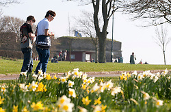 © under license to London News Pictures.  15/03/2011 People enjoy the Spring sunshine and warm weather in Plymouth, Devon. Picture credit sould read: David Hedges/LNP