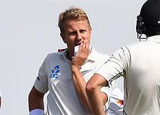 Wellington-Cricket, New Zealand v Bangladesh, 1st test, Day 4