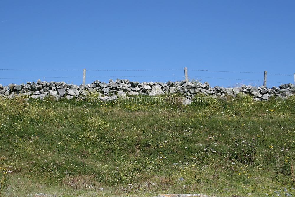 field in Connemara