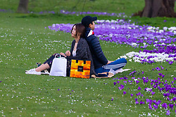 A couple relax among the crocuses as crowds enjoy the unseasonably warm and sunny weather in Regents Park, London. London, February 26 2019.