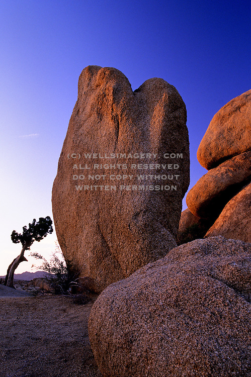 Image of Joshua Tree National Park in southeastern California, American Southwest