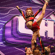 7136_Crimson Heat Tigers - Crimson Heat Tigers  Medium Senior Level 2