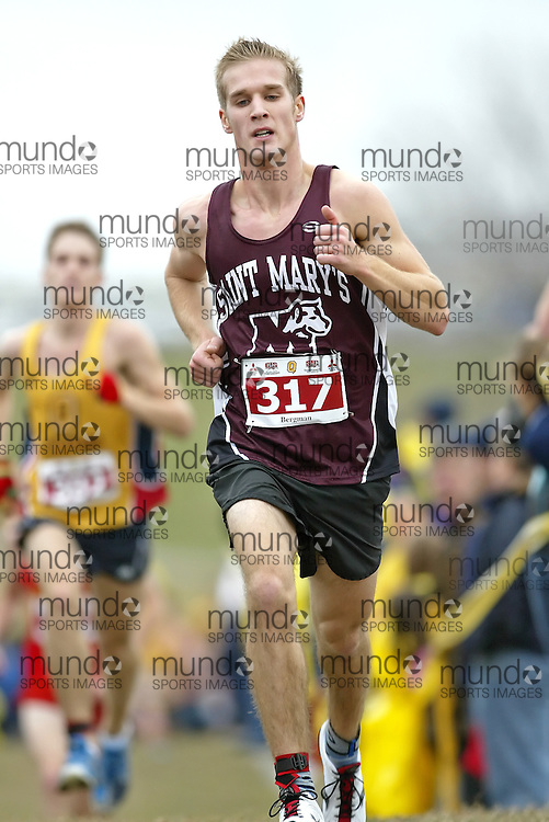 (Kingston, Ontario -- 14 Nov 2009)  JOEL BERGMAN of the Saint Mary's University runs to 49 place at the  2009 Canadian Interuniversity Sport CIS Cross Country Championships at Forth Henry Hill in Kingston Ontario. Photograph copyright Sean Burges / Mundo Sport Images, 2009.