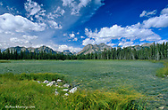 Buller Pond with mount Assiniboine in background in the Kananaskis Country of Alberta Canada