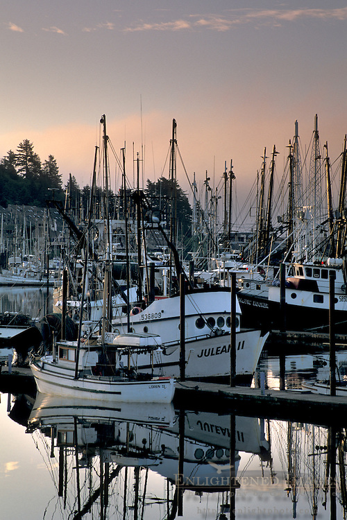 Fog bank at dawn over commercial fishing boats in harbor at sunrise, Yaquina Bay, Newport, Oregon Coast