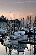 Fog bank at dawn over commercial fishing boats in harbor at sunrise, Yaquina Bay, Newport, Oregon Coast