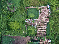 Aerial view of farmlands in the outskirts of Tay Ho District, Hanoi, Vietnam, Southeast Asia