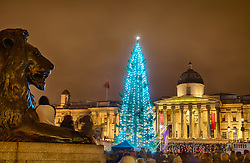 The lighting of Trafalgar Square Christmas Tree, London, UK, December 6, 2012. Photo by Andre Camara / i-Images