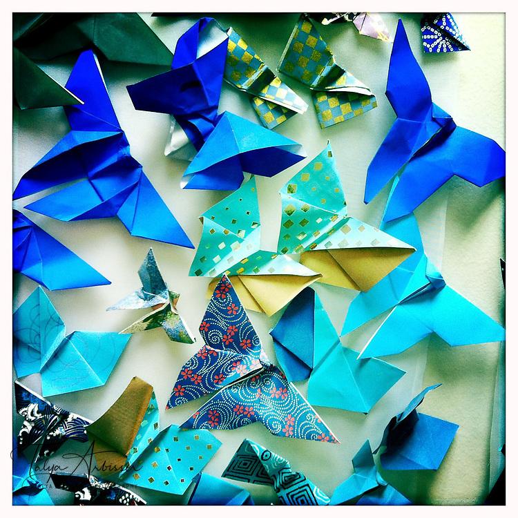 Blue origami - Houston, Texas