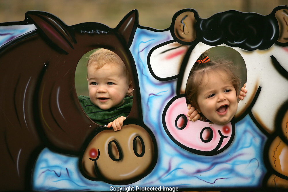 (left to right) Justin Vandervoort, 1, and his friend Madison Milburn, 1, pose for photos as a horse and a cow while visiting the Pigeon Roost Farm on Wednesday October 15, 2008. At Pigeon Roost Farm kids and adults can not only pick out the perfect pumpkin, but also feed goats, hold rabbits and roam with turkeys.