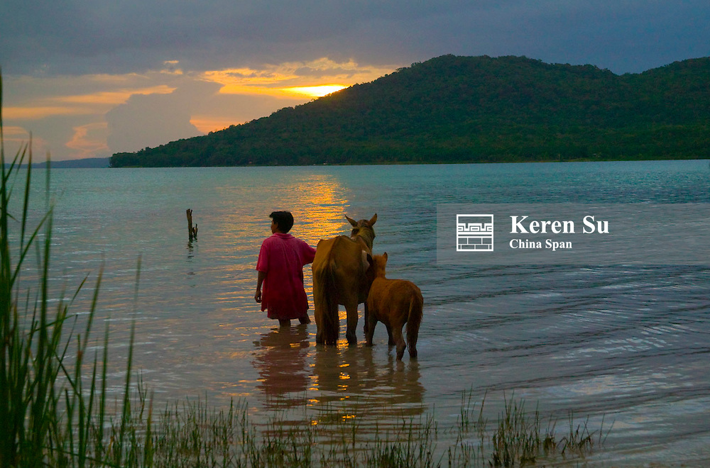 Farmer with horses in Lago Peten Itza, El Remate, Guatemala