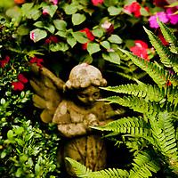 Guritz's Garden~Highlands, NC