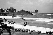 Salvador de Bahia, Brazil.