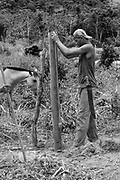Comunidade de Santa Helena, na região do baixo Jequitinhonha, Norte de Minas Gerais. Nessa região é possível encontrar três tipos de biomas: caatinga, cerrado e mata atlântica. A ASA Brasil, Articulação no Semiárido Brasileiro, tem implementado em diversas comunidades no Norte de Minas o Programa Uma Terra e Duas Águas (P1+2) e o Programa Um Milhão de Cisternas (P1MC) que tem como objetivo viabilizar a captação e armazenamento de água de chuva nessas comunidades para consumo humano, criação de animais e produção de alimentos. Mutirão para construção de viveiro de mudas na comunidade.