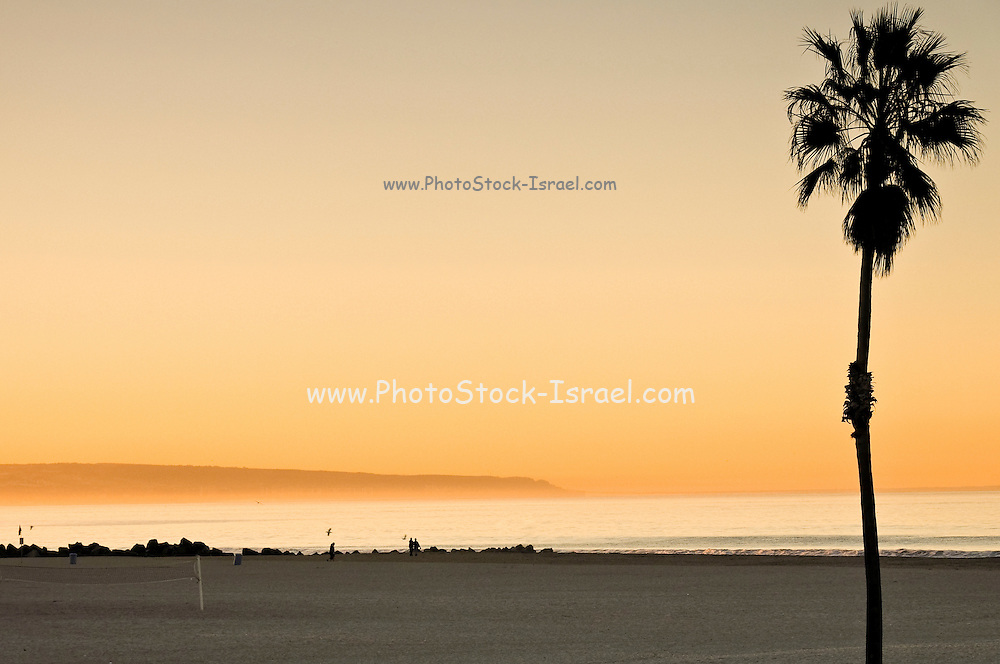 USA, California, San Diego - The Pacific coast at sunset