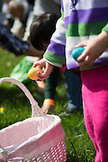 Josephine Lilly, 2, drops eggs and candy into her basket during the Easter Egg Hunt at Christ Community Church in Milpitas, California, on March 30, 2013. (Stan Olszewski/SOSKIphoto)