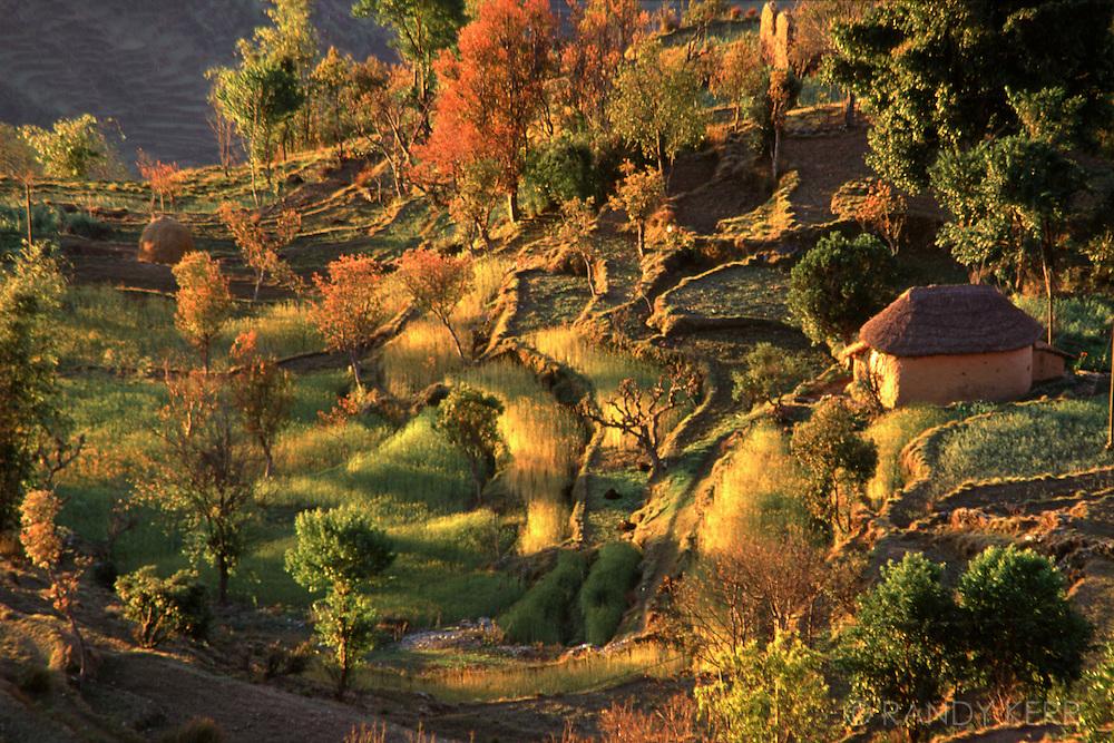 Pokhara village setting