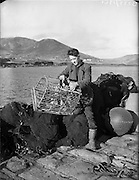 26-29/01/1960<br /> 01/26-29/1960<br /> 26-29 January 1960<br /> Gael-Linn Special at Gweedore and Teelin Co. Donegal. A man working on what appear to be crab pots or traps on the quayside.