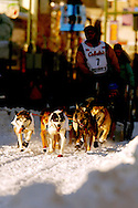 3/3/2007:  Anchorage Alaska -  The lead dogs for Veteran Zack Steer of Sheep Mountain, AK break out into the morning sun shining through the buildings of downtown Anchorage during the Ceremonial Start of the 35th Iditarod Sled Dog Race