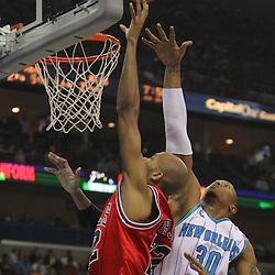 01-29-2010 Bulls at Hornets