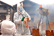 People in costume as part of a float representing the 'Bird flu' sickness perform during the celebration of an ancient traditional carnival on January, 31st 2006, Basque Country. Joaldun groups take part in the carnival at the villages of Ituren and Zubieta carrying sheep furs and big cowbells on their backs to wake up the earth, looking for a good new year, a good harvest and to keep away the bad spirits.. Bostok Photo: Ander Gillenea