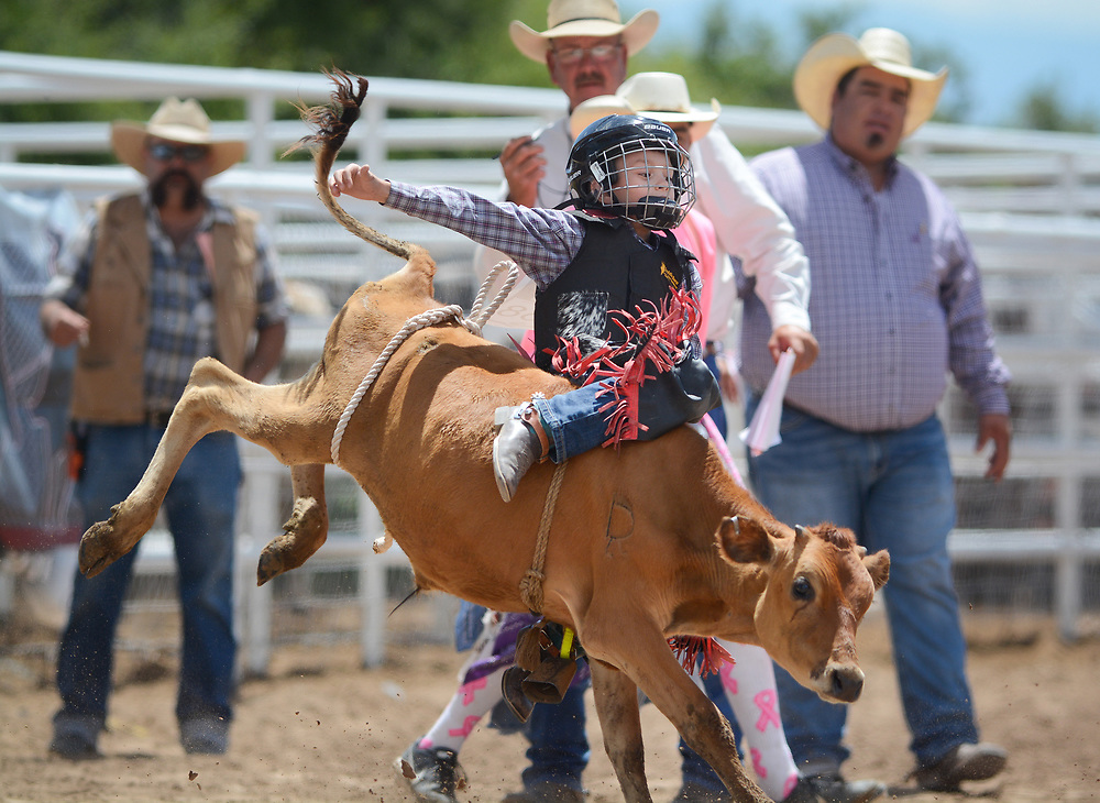 A young cowboy competes in calf riding, in the six and under division, during the BernCo Bernie Sheep Day and First Impression Youth Rodeo, Saturday, August 5, 2017, at Bernalillo County's Dennison Park Rodeo Grounds in the South Valley. This is the fourth year for the annual event. (Marla Brose/Albuquerque Journal)
