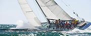12 Meter class Nefertiti racing in the Opera House Cup regatta.