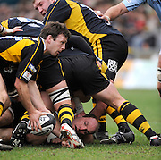 Wycombe, GREAT BRITAIN, Wasps, Simon AMOR, collects the ball, Lawrence DALLAGLIO, secures from the ruck, during the Guinness Premiership match, London Wasps vs Bristol Rugby, played at the Adams Park Stadium, on Sat. 23rd Feb 2008.  [Mandatory Credit, Peter Spurrier/Intersport-images]