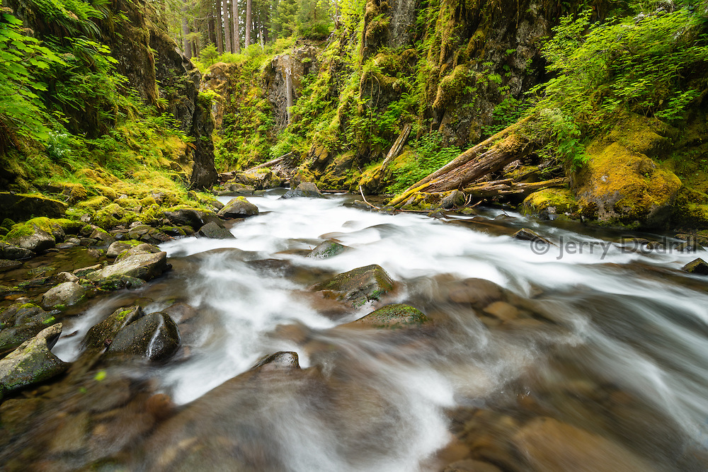 Sol Duc River in Olympic National Park, near Forks, Washington.