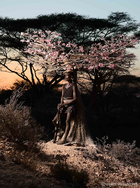 Dula Mamero poses for a portrait under a desert rose tree at sunset, Lower Omo Valley, Ethiopia.
