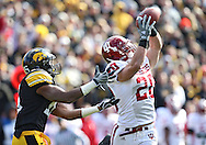 October 31, 2009: Indiana safety Austin Thomas (20) intercepts a pass in front of Iowa wide receiver Derrell Johnson-Koulianos (15) during the second half of the Iowa Hawkeyes' 42-24 win over the Indiana Hoosiers at Kinnick Stadium in Iowa City, Iowa on October 31, 2009.