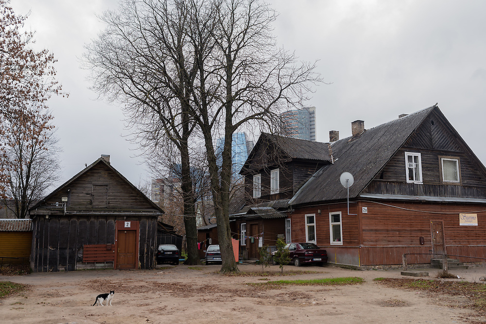 A cat stands in front of traditional wooden houses in the Snipiskes neighborhood of Vilnius, Lithuania