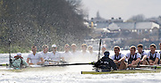Putney, GREAT BRITAIN,   Both crews,on the Hammersmith Bend  during the 2009 Boat Race,  over  the Championship Course - Putney to Mortlake, on the River Thames, Sun.29.03.2009. [Mandatory Credit, Peter Spurrier / Intersport-images].Surrey Station, Cambridge Crew, Bow Rob WEITEMEYER, Henry PELLY, Tom RANSLEY, Peter MARESLAND, Deaglan McEACHERN, Hardy CUBASCH, Ryan MONAGHAN, Silas STAFFORD and cox Rebbecca DOWBIGGIN...Middlesex Station Oxford Crew, Bow, Michal PLOTKOWIAK, Colin SMITH, Alex HEARNE, Ben HARRISON, Sjoerd HAMBURGER, Tom SOLESBURY, George BRIDGEWATER, Ante KUSURIN and cox Colin GROSHONG. . Rowing Course: River Thames, Championship course, Putney to Mortlake 4.25 Miles,