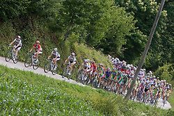 Peloton at Gabrje at 4th stage of Tour de Slovenie 2009 from Sentjernej to Novo mesto, 153 km, on June 21 2009, Slovenia. (Photo by Vid Ponikvar / Sportida)