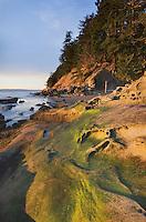 Clayton Beach, Larrabee State park Washington