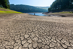 © Licensed to London News Pictures. 05/07/2018. Upper Derwent Valley UK. Scenes this morning at Derwent Reservoir in Derbyshire show the extent the water level has dropped during the UK heatwave leaving a sun scorched shore line. Photo credit: Andrew McCaren/LNP