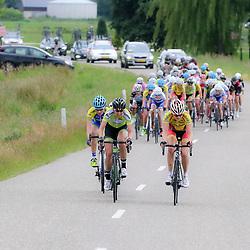 20-06-2015: Wielrennen: Omloop IJsseldelta: Zwolle<br /> ZWOLLE (NED) wielrennen<br /> De omloop van de Ijsseldelta voor vrouwen met start en finish in Zwolle voerde het vrouwenpeloton langs de mooiste plekjes van Overijssel. Marijn de Vries (Zwolle) probeerde nog een paar keer met een groepje aan de greep van het peloton te ontkomen