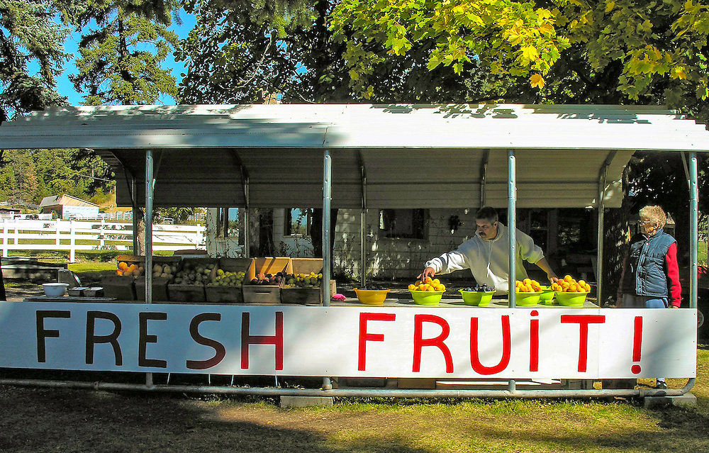 A farm stand along a highway in Montana. Not too many visitors, but still mom and son take care of the fruit display.
