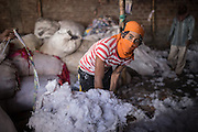 A worker pictured in a cotton recycling factory in Kamrangirchar, Dhaka, Bangladesh.