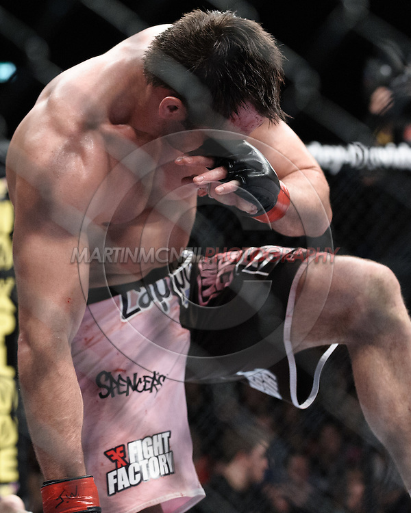 "DUBLIN, IRELAND, JANUARY 17, 2009: Rich Franklin rests on the canvas afer an accidental eye-poke from Dan Henderson during ""UFC 93: Franklin vs. Henderson"" inside the O2 Arena in Dublin, Ireland"